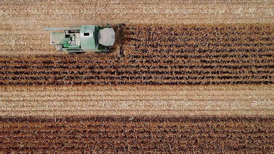 'Çiftçi buğday ekmiyor aç kalacağız'