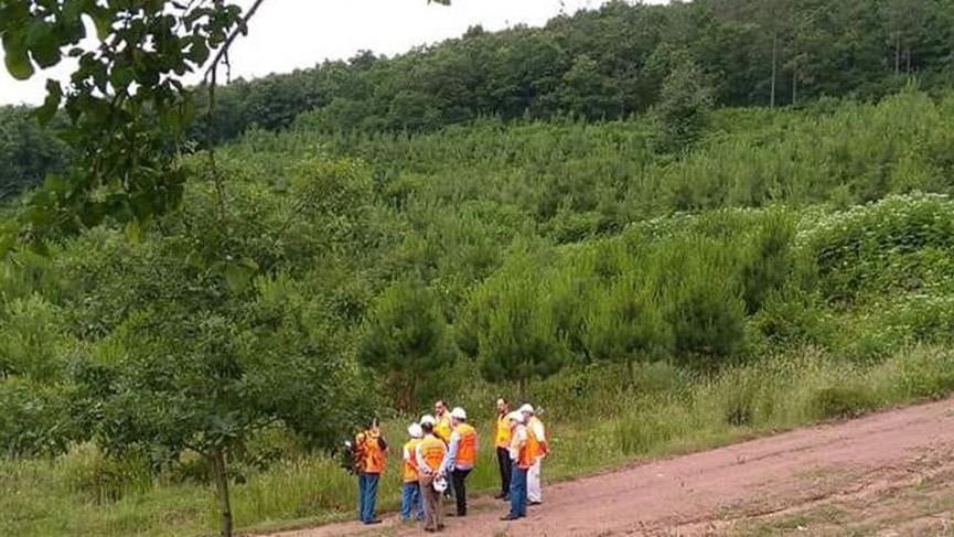 Çöp tesisi için 11 bin 804 ağaç kesilecek!