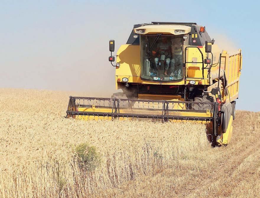 Başta yüzde 100 zamlanan DAP gübresi olmak üzere yükselen maliyetler sebebinden bu sene buğday ekim alanlarının çoğu boş kaldı.