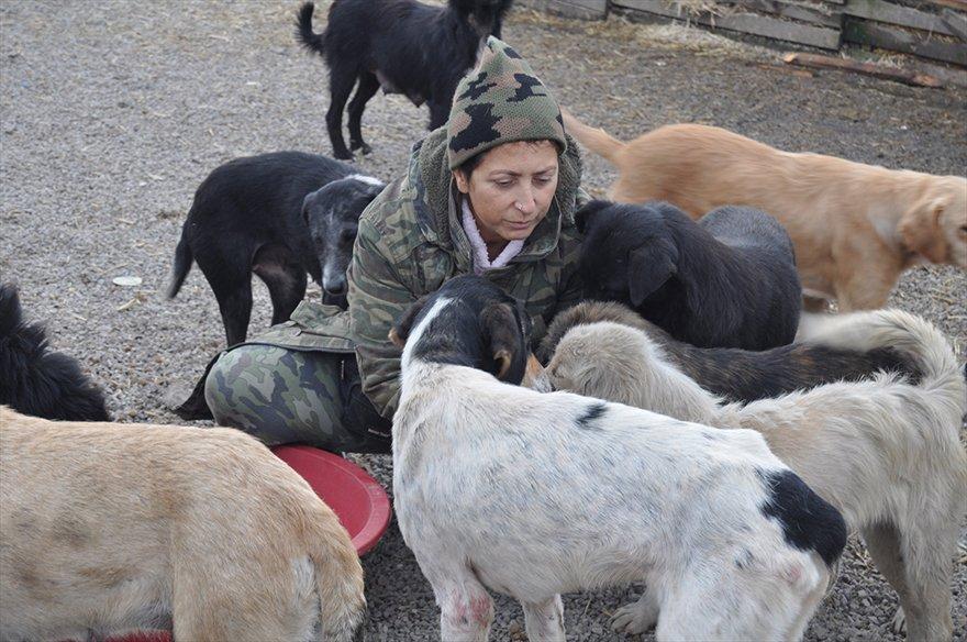 FOTO: AA- Bartın'da hayvansever Sevim Arkan sokak hayvanlarına yönelik şiddete tepki göstermek amacıyla 4 gündür açlık grevi yapıyor