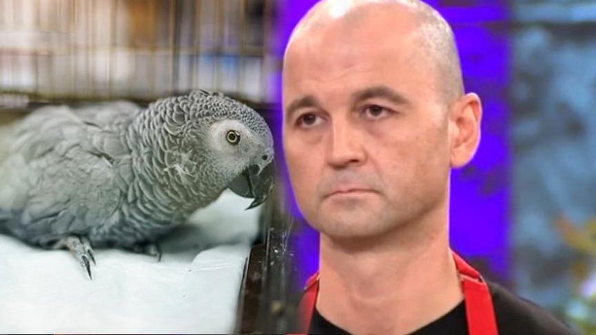 MasterChef Murat Özdemir'in işkence uyguladığı papağandan kötü haber geldi!