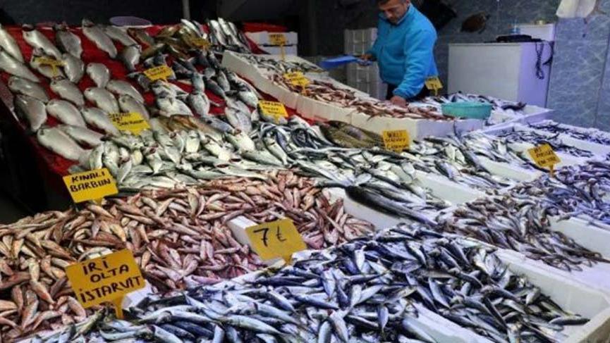 Son 15 yılın en bereketli balık sezonu