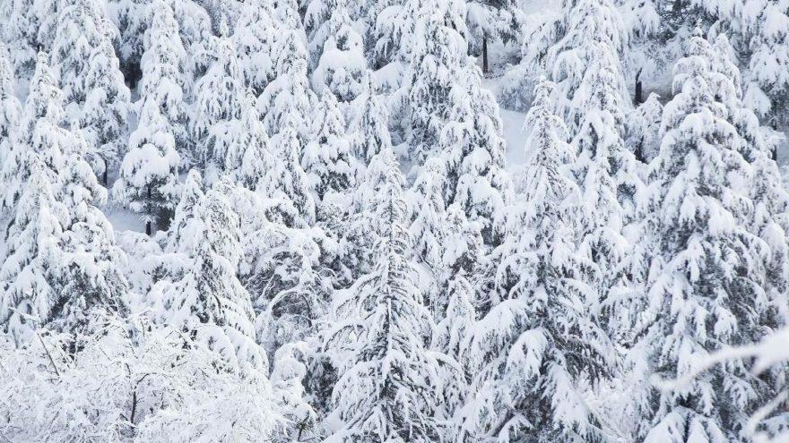 Meteoroloji'den hava durumu raporu: Yoğun kar yağışına dikkat!