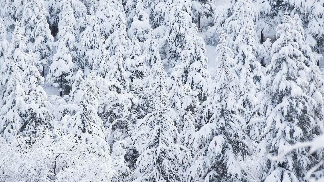 Meteoroloji'den son dakika hava durumu raporu: Yoğun kar yağışına dikkat!