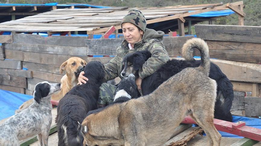 Hayvan hakları için çöplükte açlık grevi yapıyor