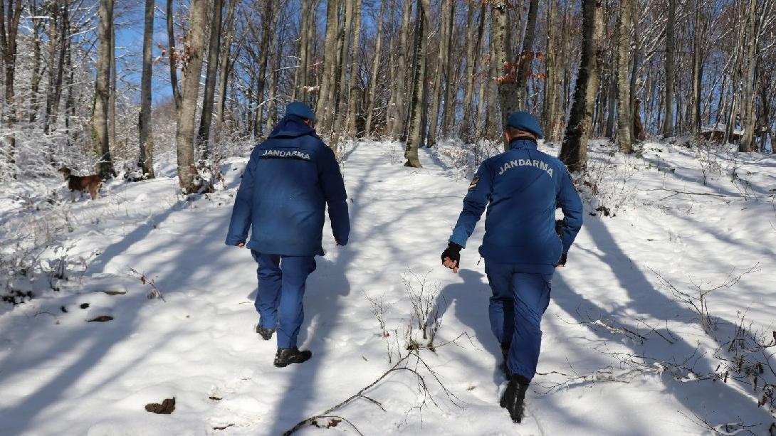 Almanya'dan ihbar geldi Jandarma Bolu Dağı'nda arıyor