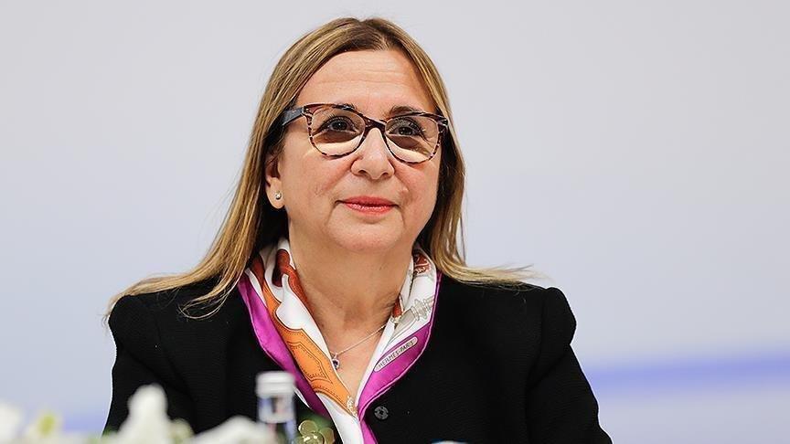 Ticaret Bakanı Ruhsar Pekcan ile ilgili görsel sonucu