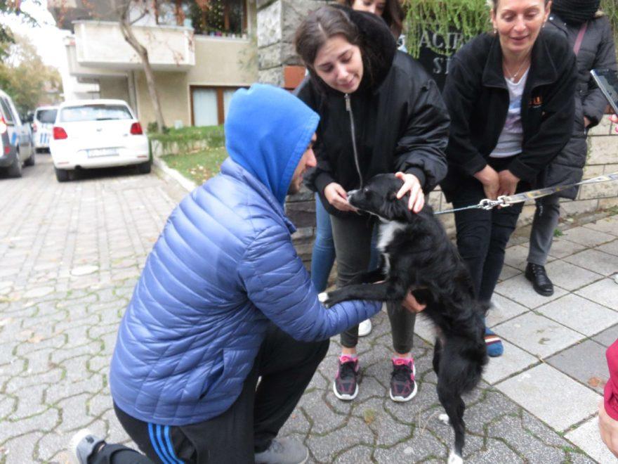 Köpeği mahalleli kurtardı. DHA