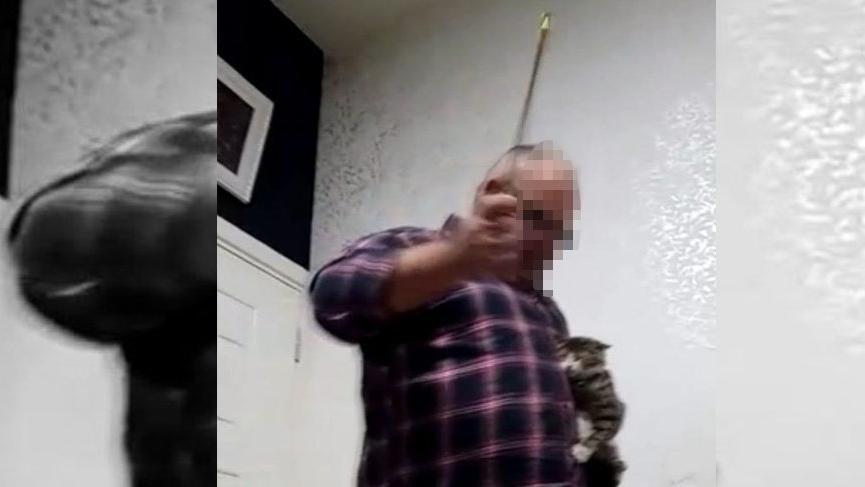 Kediye işkence yapan adam, akıl hastanesine sevk edildi!