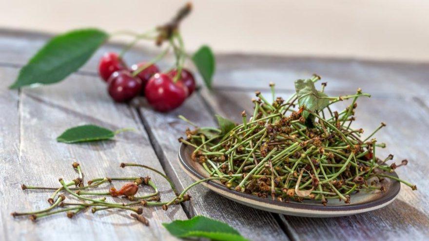 Kiraz sapı çayı nasıl yapılır? Faydaları nelerdir?