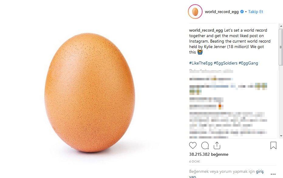 yumurta-rekor