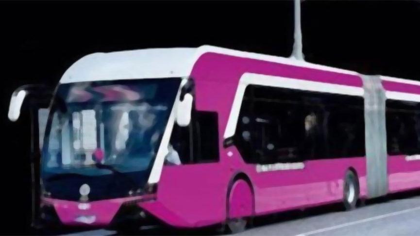 Saadet Partisi'nden İstanbul'a 'Pembe Metrobüs' önerisi
