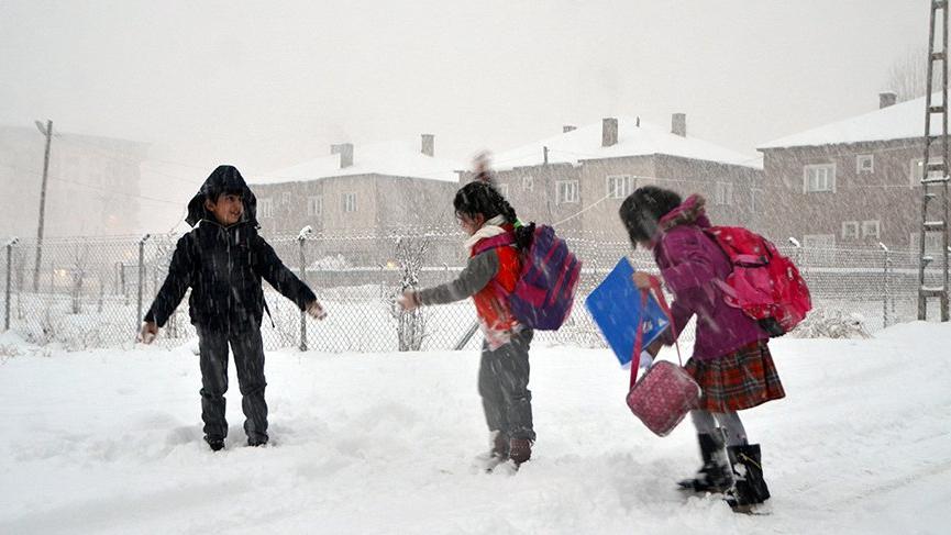 Bitlis ve Muş'ta eğitime kar engeli