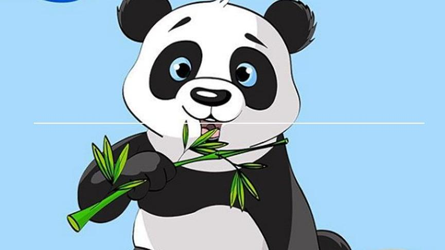 Pandaların olmazsa olmazları nedir?