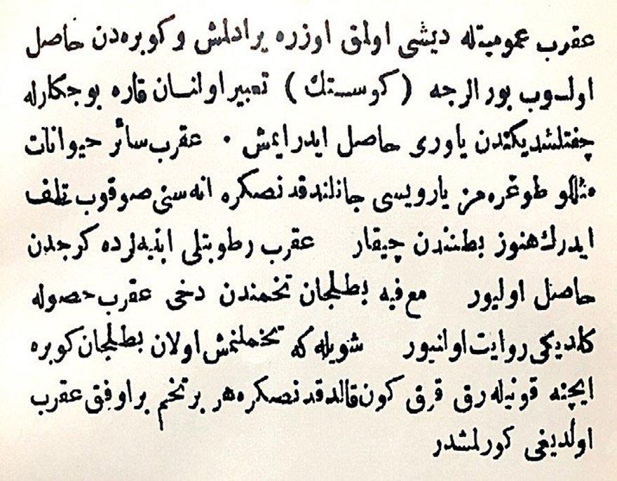 """Diyarbakır vilayetinin 1302 (1884) tarihli resmi salnamesinde yer alan bu bölümde akrebin 'gübreden' ve 'kireçten' meydana geldiği belirtilerek şöyle deniliyor: """"Mamafih patlıcan tohumundan dahi akrep husule geldiği rivayet olunuyor. Şöyle ki tohumlanmış olan patlıcan gübre içine konularak kırk gün kaldıktan sonra her bir tohumun bir ufak akrep olduğu görülmüştür."""""""