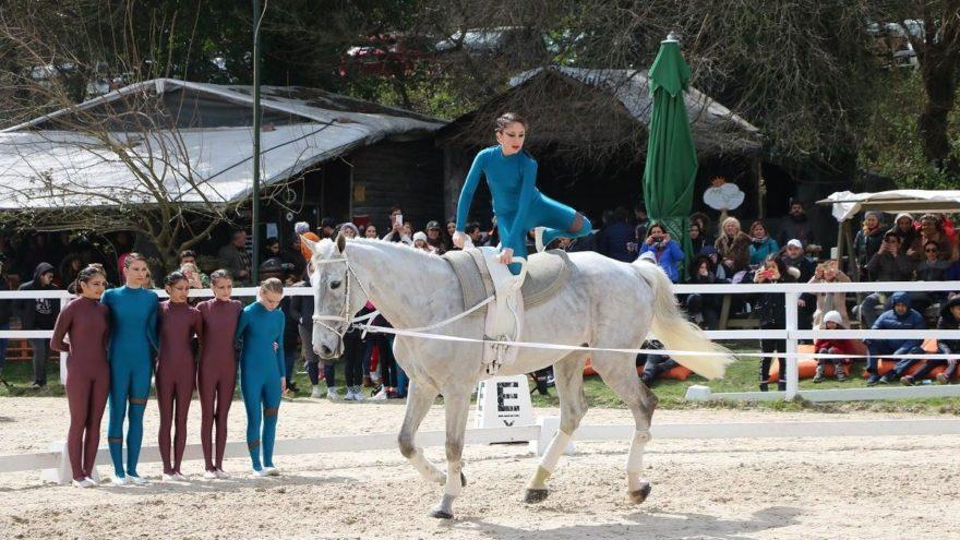 Türkiye'nin ilk resmi atlı cimnastik (Voltij) yarışması 'Alkuzu Binicilik Okulu'nda gerçekleşti