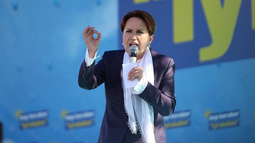 Meral Akşener: Ahlat ve Iğdır'da Cumhur İttifakını destekliyoruz