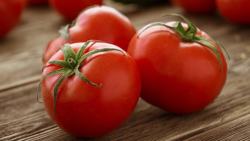 Tanzimin yıldızı domatesin ihracatı arttı