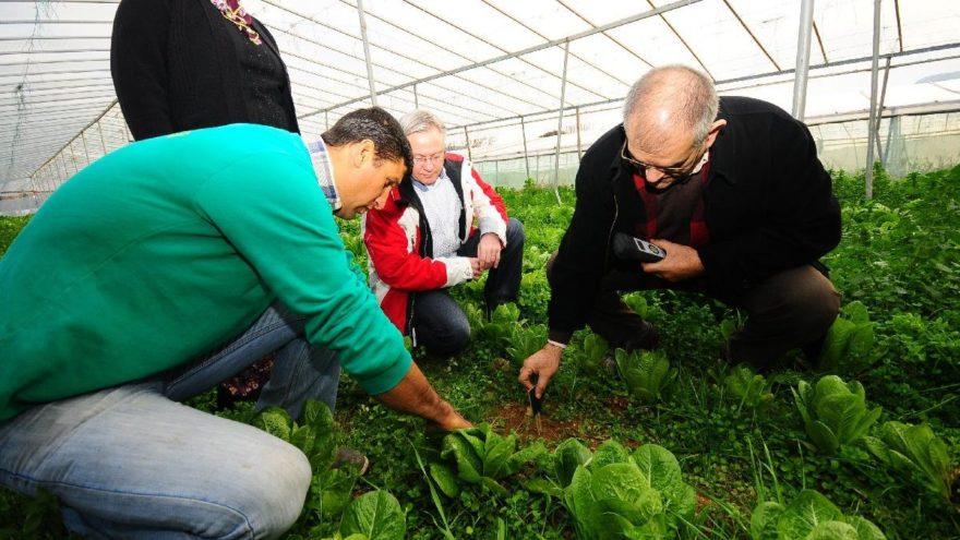 İzmir'de organik tarıma destek sürüyor