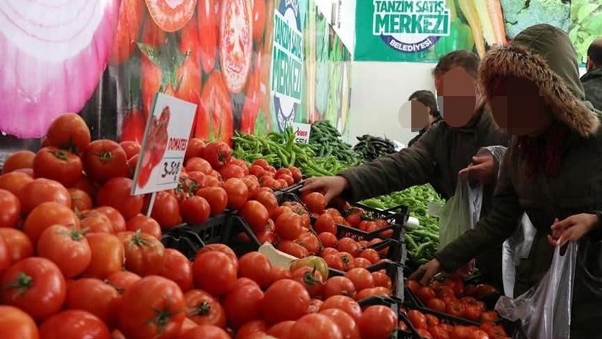 Şok iddia! Larvalı domatesler tanzime mi gitti? | Son dakika