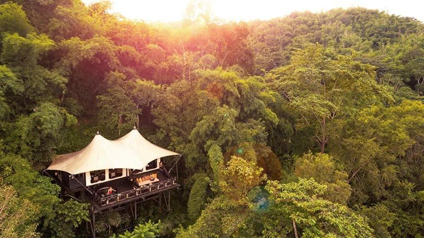 Dünyanın en iyi 10 ağaç ev oteli
