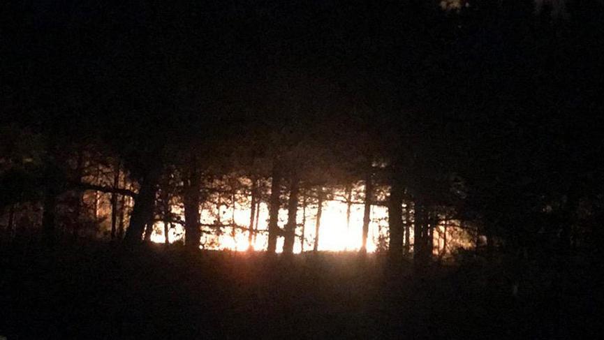 Tekirdağ'da korkutan orman yangını!