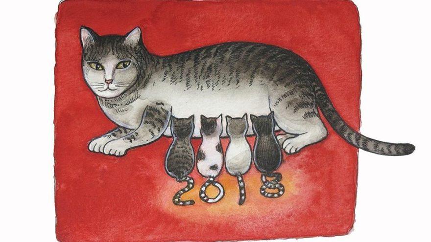 Ekşioğlu'nun kedileri CKM Galeri'de