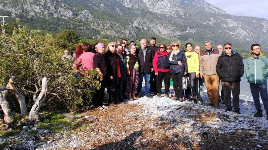 Fazla şezlong için ağaç katliamı iddiası