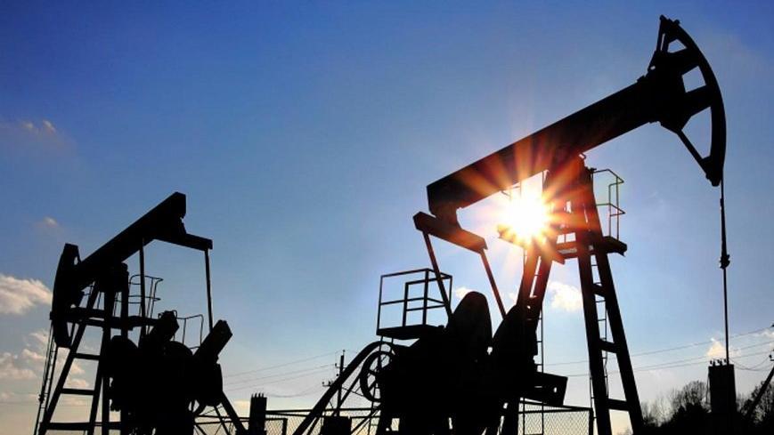 Bakan Dönmez: Petrol üretiminde bu sene hedefimiz günlük 50 bin varilin üzerine çıkmak
