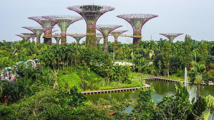 Singapur'un masal diyarı botanik bahçeleri