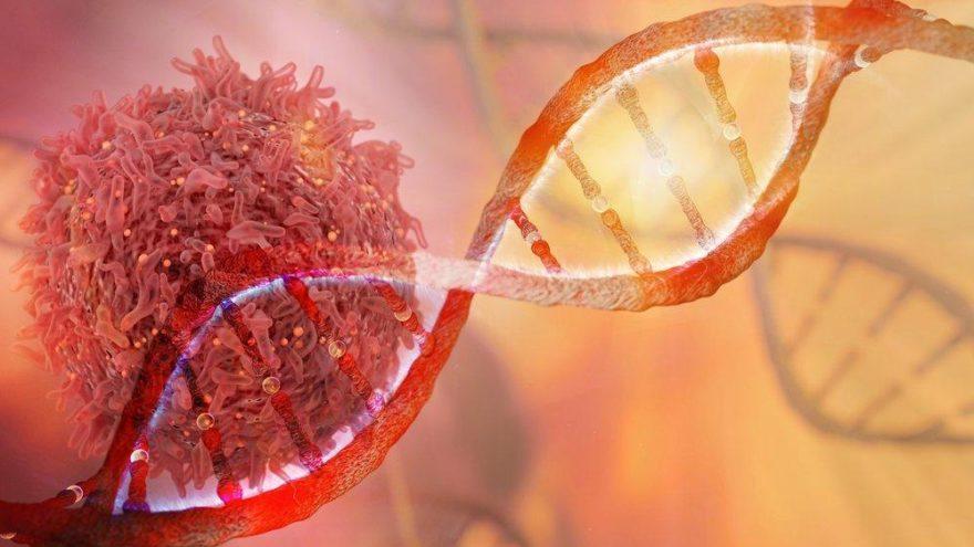 Kanserin DNA'daki parmak izini arıyorlar