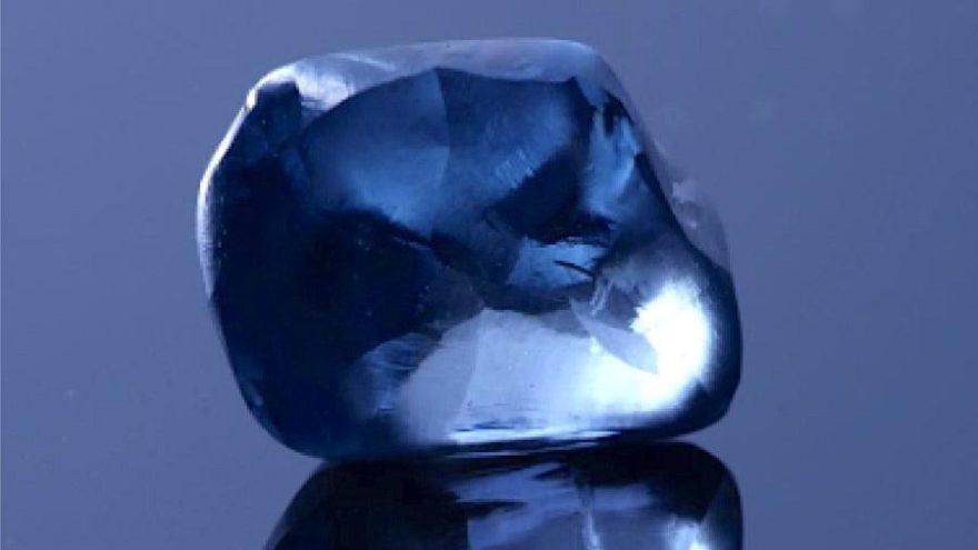Dünyanın en nadir türlerinden… Ülkenin en büyük mavi elması bulundu