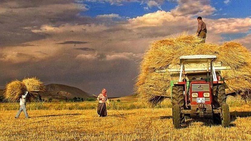 Ülke tarımına ihanet projesi