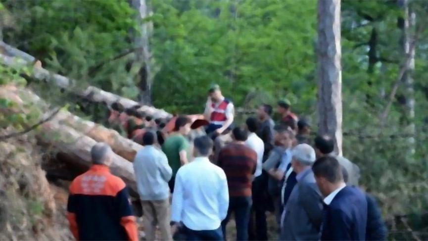 Karabük'te iki orman işçisi kestikleri ağacın altında kaldı