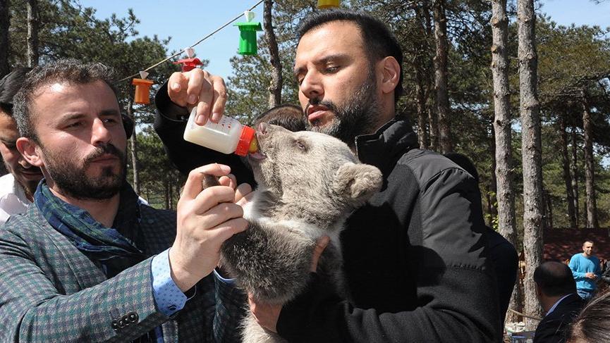 Alişan yavru ayıyı besledi