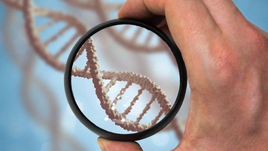 Hadi ipucu sorusu: DNA'nın açılımı nedir? 1 Mayıs Hadi ipucu sorusu ve cevabı…