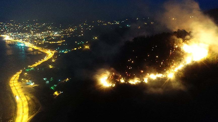 Giresun'da müdahale edilemeyen orman yangını!