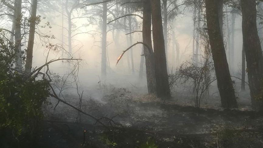Datça'da orman yangını!