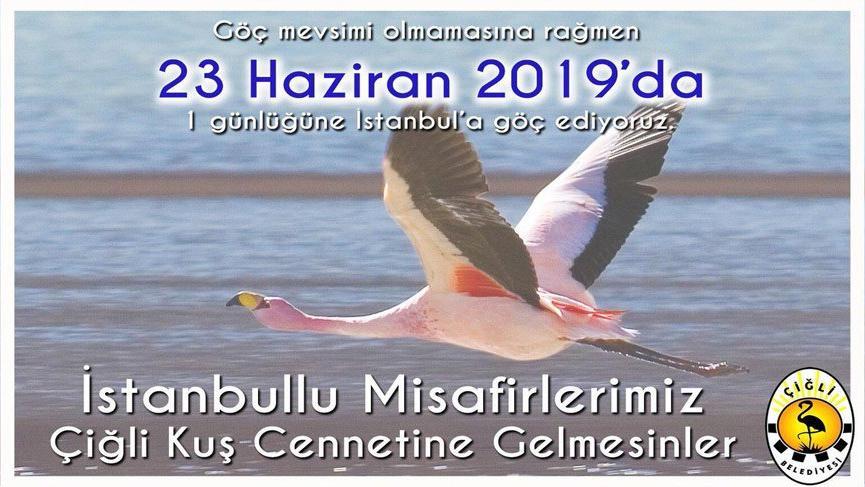 Çiğli'nin flamingoları İstanbul'a göç ediyor