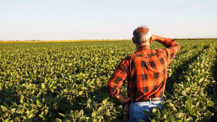 14 Mayıs Dünya Çiftçiler Günü: İşte Çiftçiler Günü mesajları…