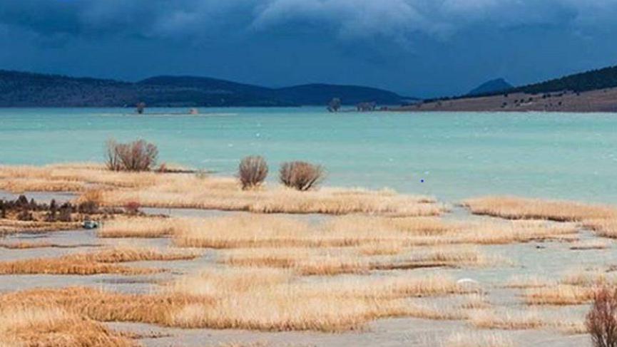 Ülkemizin en büyük tatlı su gölü hangisidir?