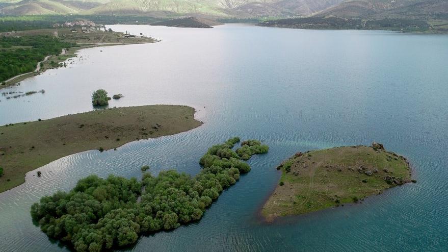 Konya Ovası bu yıl suya doydu