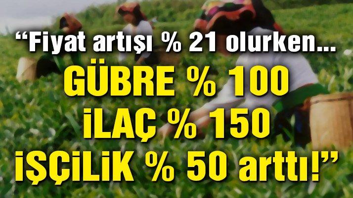 CHP'li Sarıbal: Çay için açıklanan fiyatlar üreticiyi destekler durumda değil