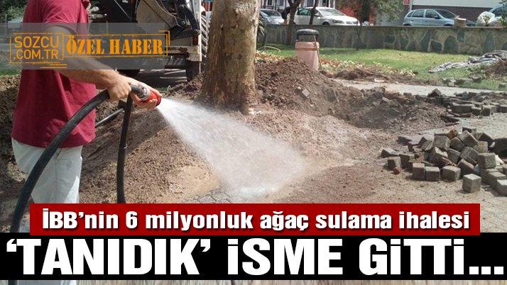 İBB'nin 6.3 milyonluk ağaç sulama işi AKP'li yöneticinin şirketine verildi