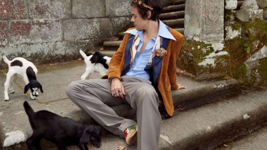 Harry Styles güzellik sektörüne adım attı