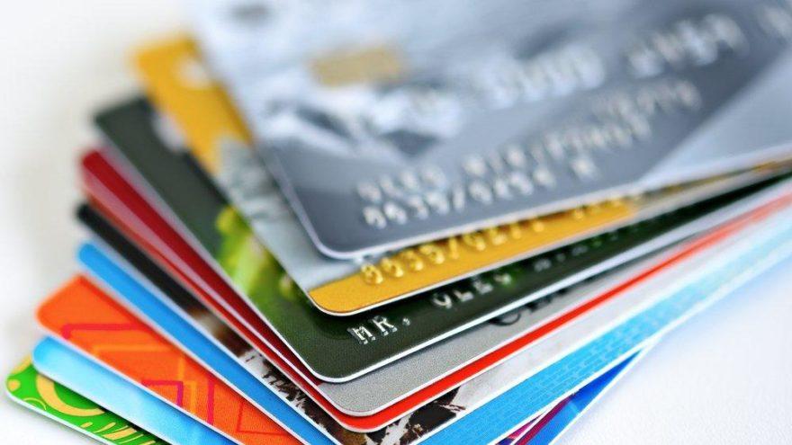 WWF araştırması: Her hafta kredi kartı büyüklüğünde plastik yutuyoruz
