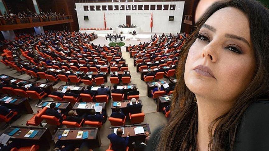 Meclis'te Ebru Gündeş'li VİP tartışması   Son dakika haberleri