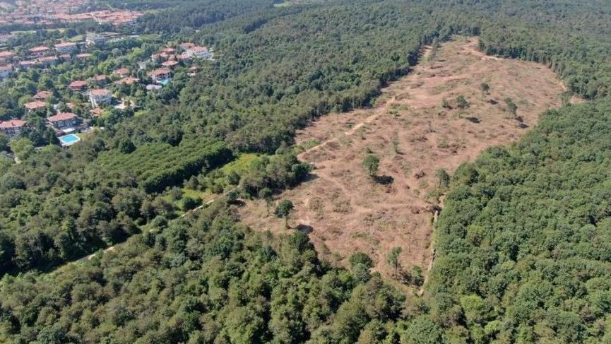 Bahçeköy-Göktürk ormanlarında neler oluyor?