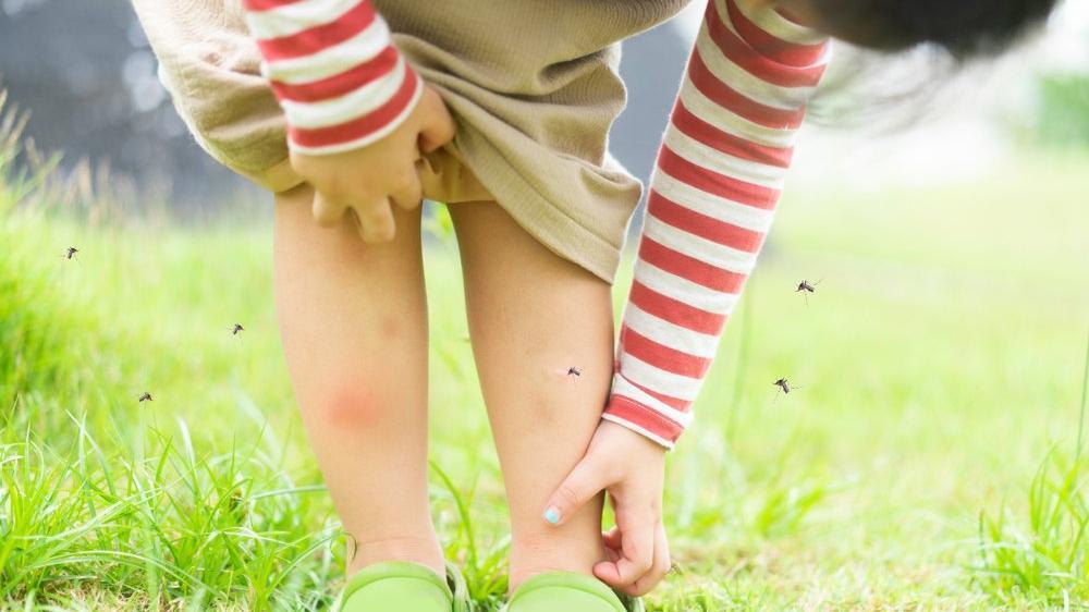 Sivrisinekler en çok hangi kan grubuna gidiyor?