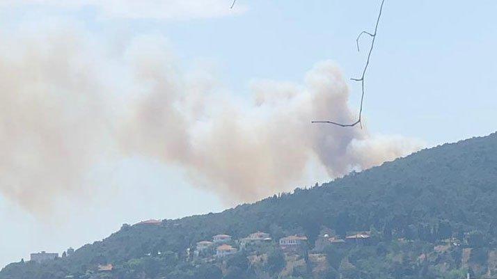 Heybeliada'da yangın: 1 hektar kızılçam kül oldu!